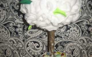 Мастер-класс «Топиарий — дерево счастья с ватных дисков»