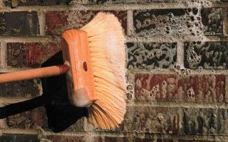Удаление высолов и гидрофобизация фасадов