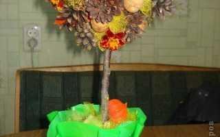 Осенние топиарии своими руками – деревья счастья из природных материалов