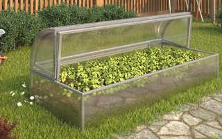 Маленькие теплицы для дачи — большие возможности для садоводов