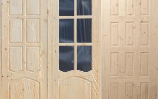 Дверь ламинированная ДПГ — дверь глухая гладкая