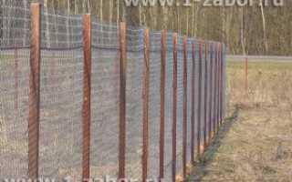 Бюджетный вариант: секционный забор из сетки-рабицы или из сварной сетки в рулонах