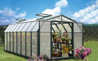 Что лучше стекло или поликарбонат для теплицы? Ответ вас удивит